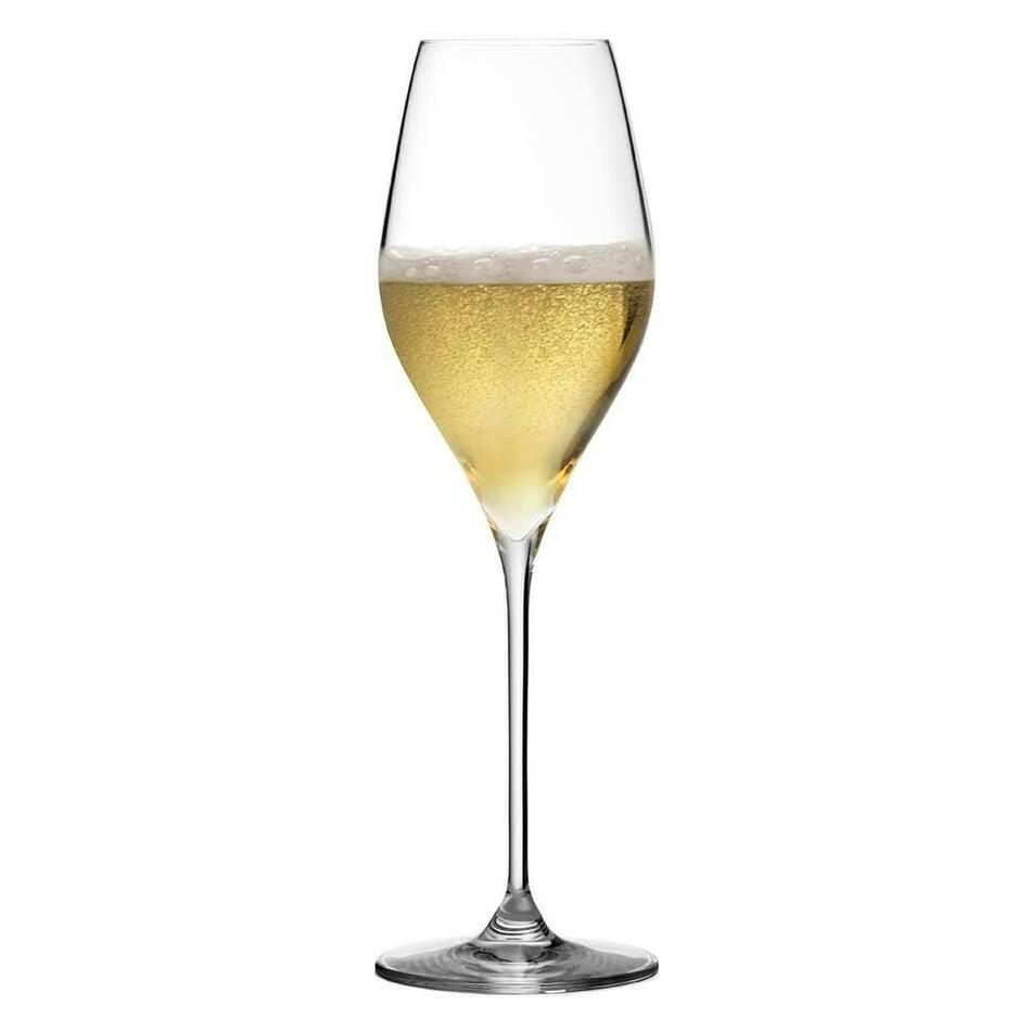 Image of   Champagneglas Bacci Urban bar